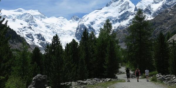 Gletscherweg Morteratsch.