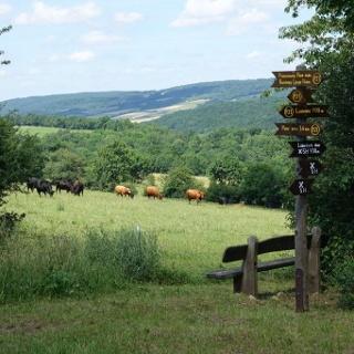 Landschaft bei Lüderbach
