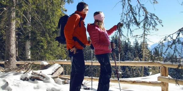 Randonnée en raquettes dans les forêts au-dessus de Crans-Montana