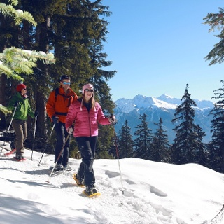 Snowshoeing in the forests above Crans-Montana