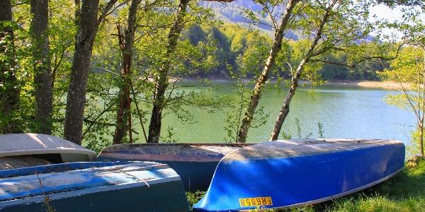 Am Lac de Montsalvens.
