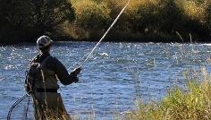 Pesca a S. Vigilio