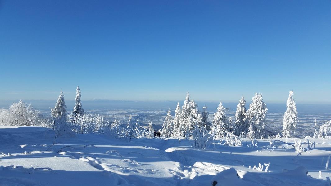 Seebach - Winterwanderung Mummelsee - Hornisgrinde