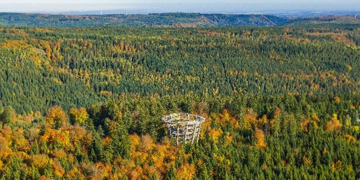 Der Baumwipfelpfad Schwarzwald bei Bad Wildbad aus der Luft aufgenommen