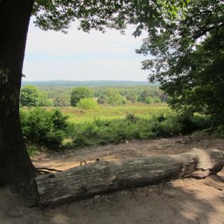 Blick vom Telegraphenberg