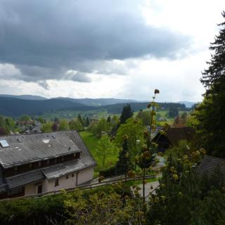 Uitzicht op Saig vanuit Haus in der Natur