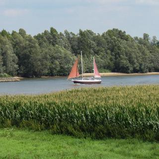 Rijn Millingen