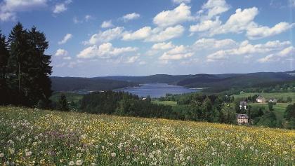 Ausblick auf Talsperre Eibenstock