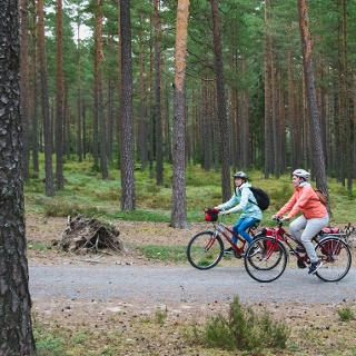 Enjoy the sounds of silence while cycling