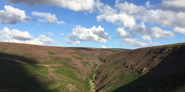 Moorland along the Pennine Way