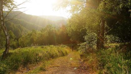 Wandern im Teutoburger Wald