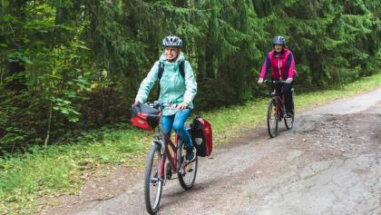 You meet bosky areas in Uusimaa on your cycling tour