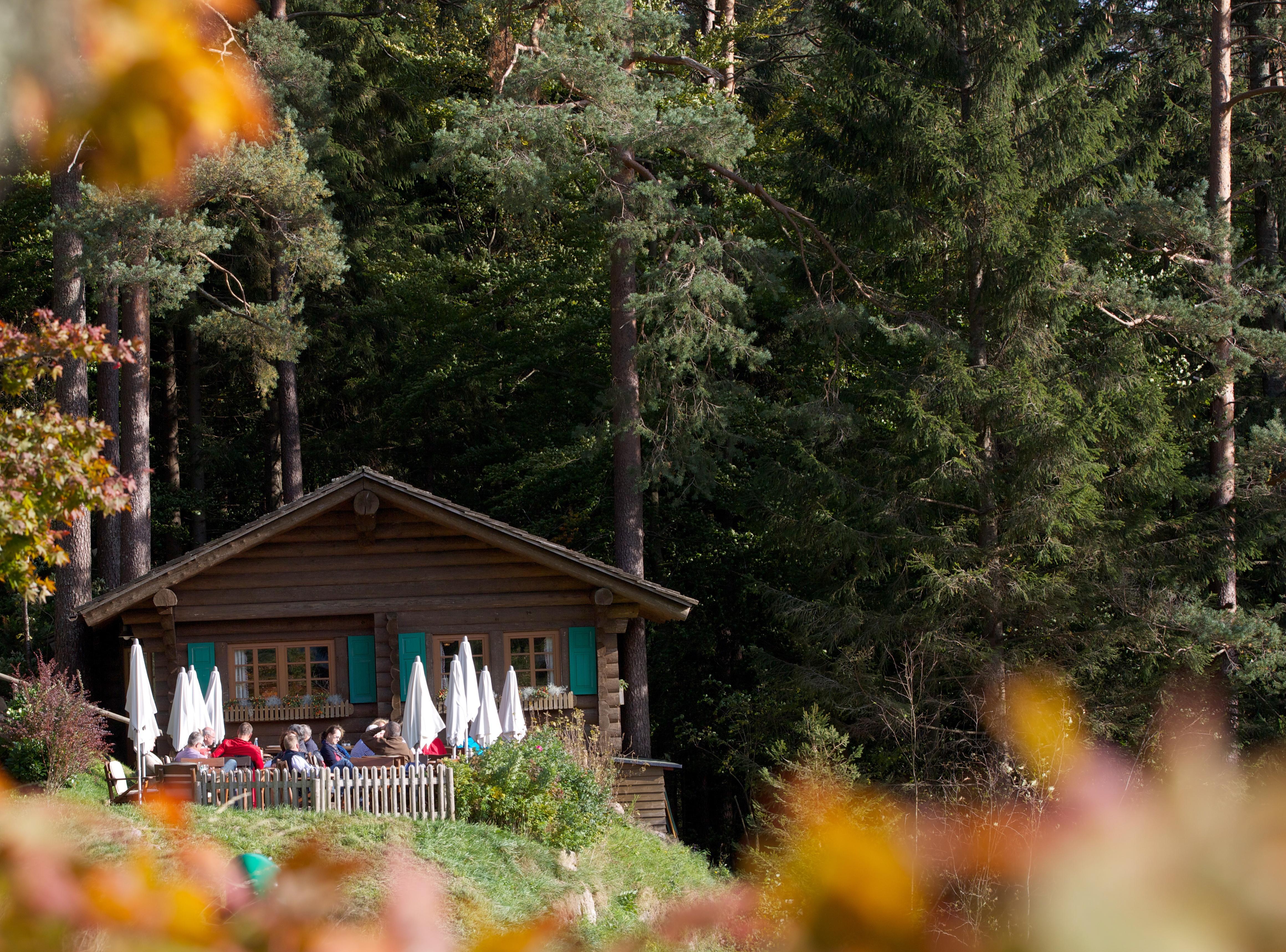 Blockhütte Tonbach