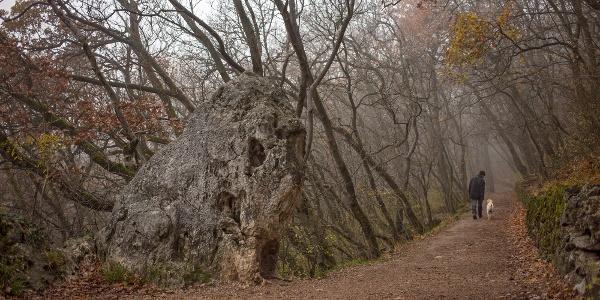 Az Oroszlán-szikla ködös, őszi napon