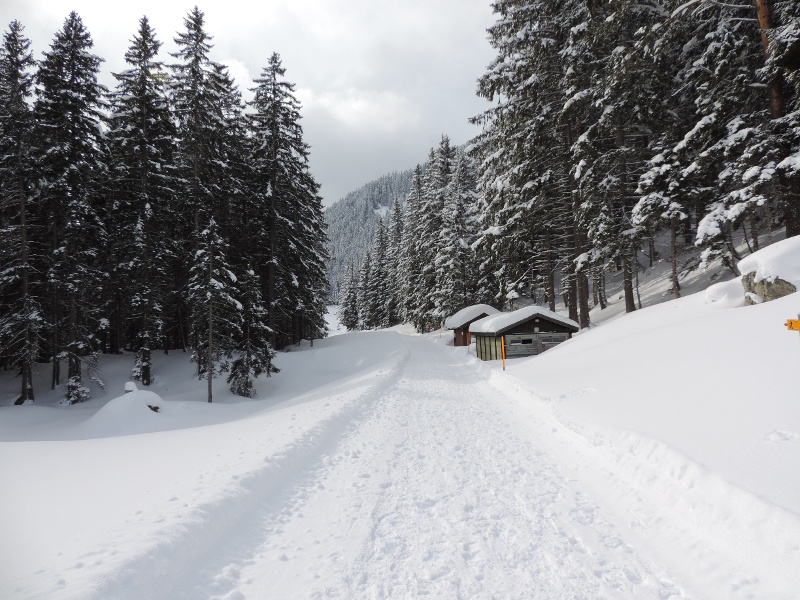 Winterwanderweg auf dem Arni