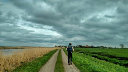 Cloudy day in Zuid Holland