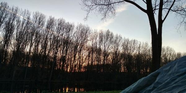 Camping Amsterdamse Bos