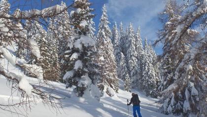 Sci alpinismo Colle Isarco