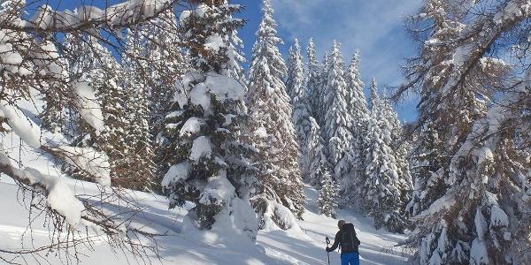 Skitouren Gossensass