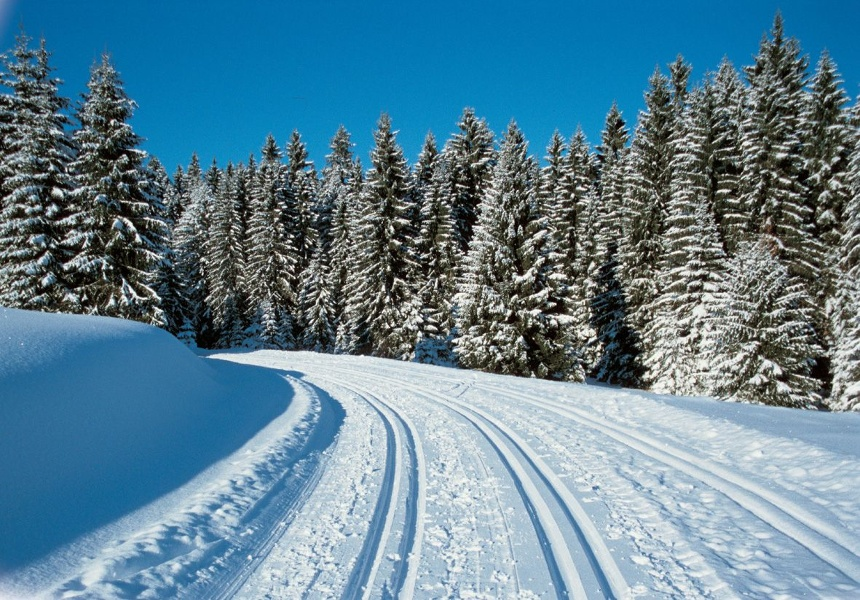 Winter - Bernau Schwarzwald: Rechberg-Loipe