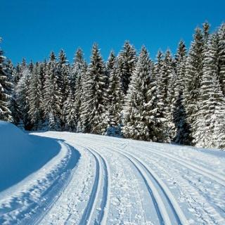 Langlauf in Bernau