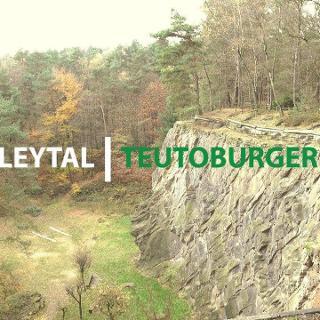 Wandern im Brumleytal | Teutoburger Wald | 4K
