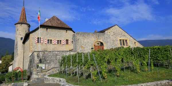 Schloss Boudry.