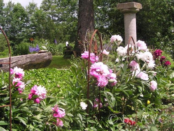 Bruggerhof Privatgarten (Angelika Gräfin von Courten)