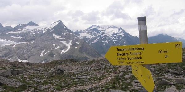 Blick zu Sonnblick und Hocharn von der Fragranter Scharte (23.07.2017)