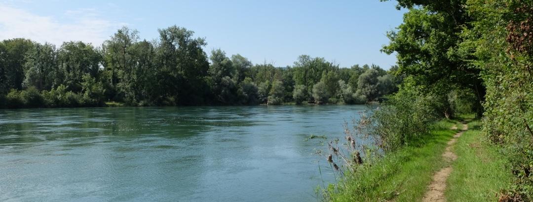 Wanderweg am Ufer des Hochrheins