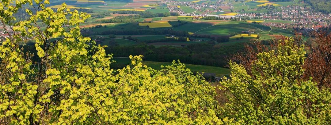 Blick vom Burghorn in die Landschaft um Lengnau.