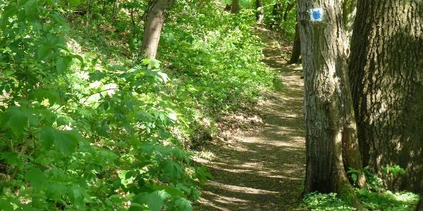 Der 66-Seen-Wanderweg