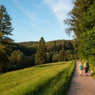 herrliche Fernsicht auf dem Weg zum Wasserschloss Mespelbrunn