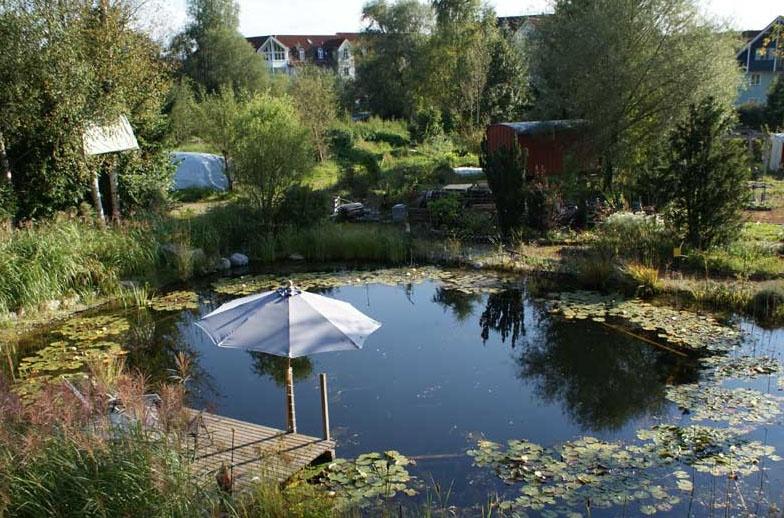 Ausblick auf den Schwimmteich (Blumenschule)