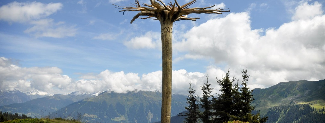 Der Mythenbaum - Themenweg Gauertaler AlpkulTour