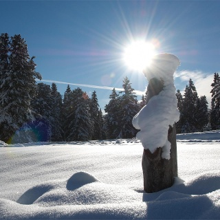 Inverno ad Aldino