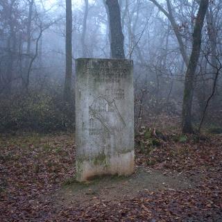 Mátyás király vadaskertjének emlékműve