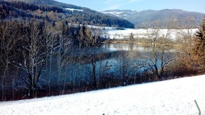 Kraiger See im Winter, Blick nach Norden