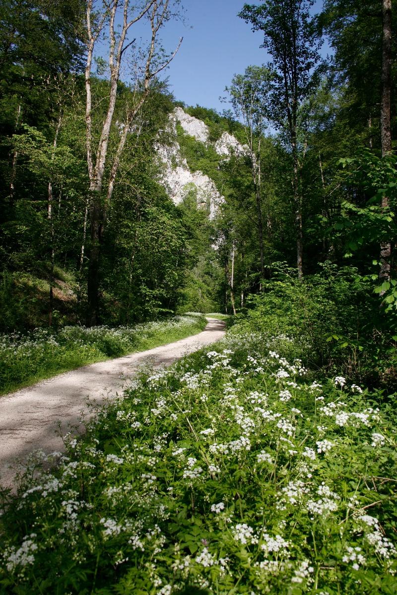 Das Glastal Und Die Wimsener Hohle Urlaubsland Baden Wurttemberg