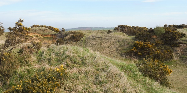Cleeve Hill Common