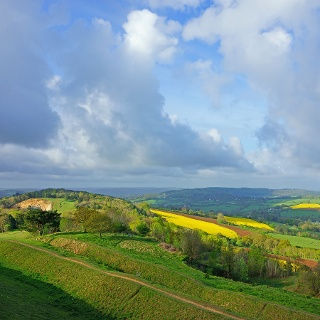 Views from Painswick Beacon