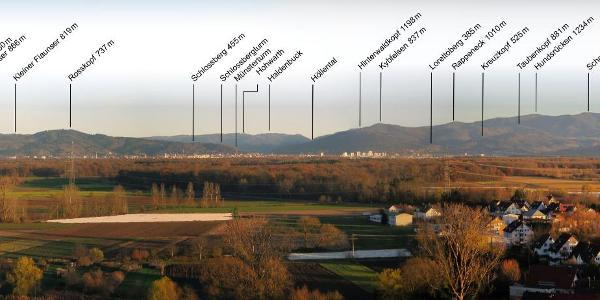 Panoramablick zum Schwarzwald