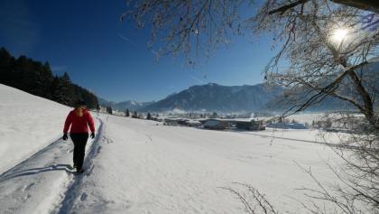 Auf dem Panoramaweg im Tannheimer Tal