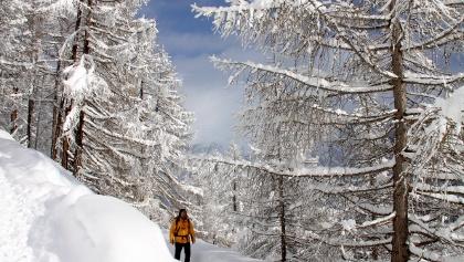 Der Zuckmayer-Weg ist auch im Winter präpariert.