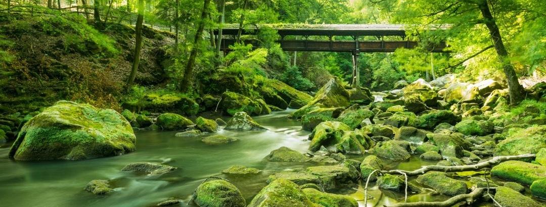 Irreler Wasserfälle in der Eifel
