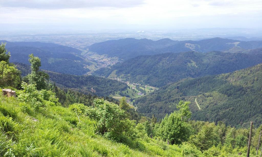 Klettersteig Schwarzwald : Bergsteigen im schwarzwald die schönsten touren der region