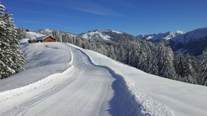 Die Alpwegalpe und im Hintergrund unser Ziel, die Alpwegkopfhütte