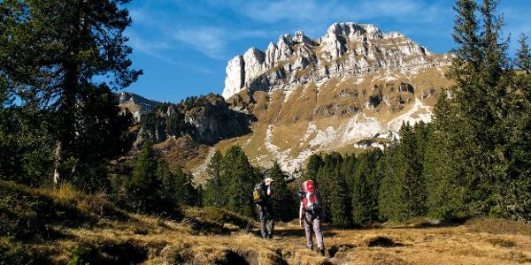 Unterwegs Richtung Hohganthütte.