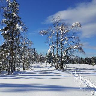 ... die nur im Winter betreten werden kann ...