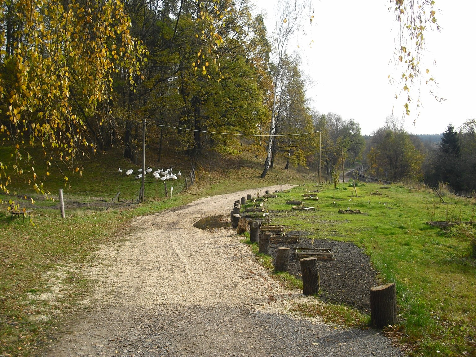 Müllers Torweg